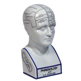 Hoofd model, Phrenology Head